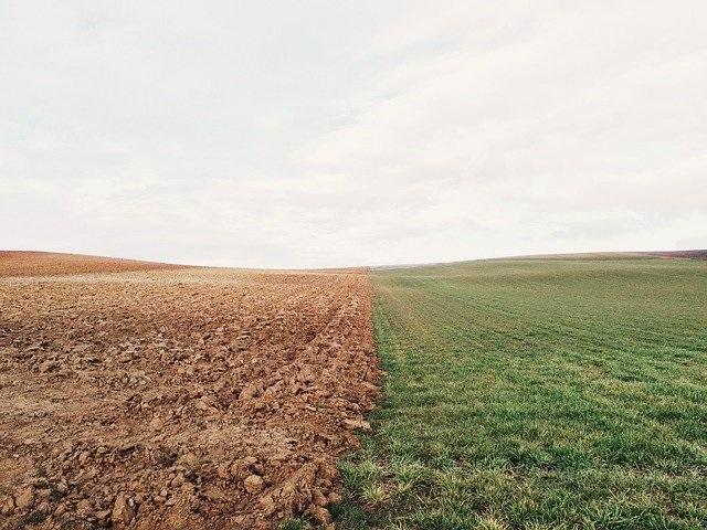 האם ניתן לשקם קרקעות מזוהמות?
